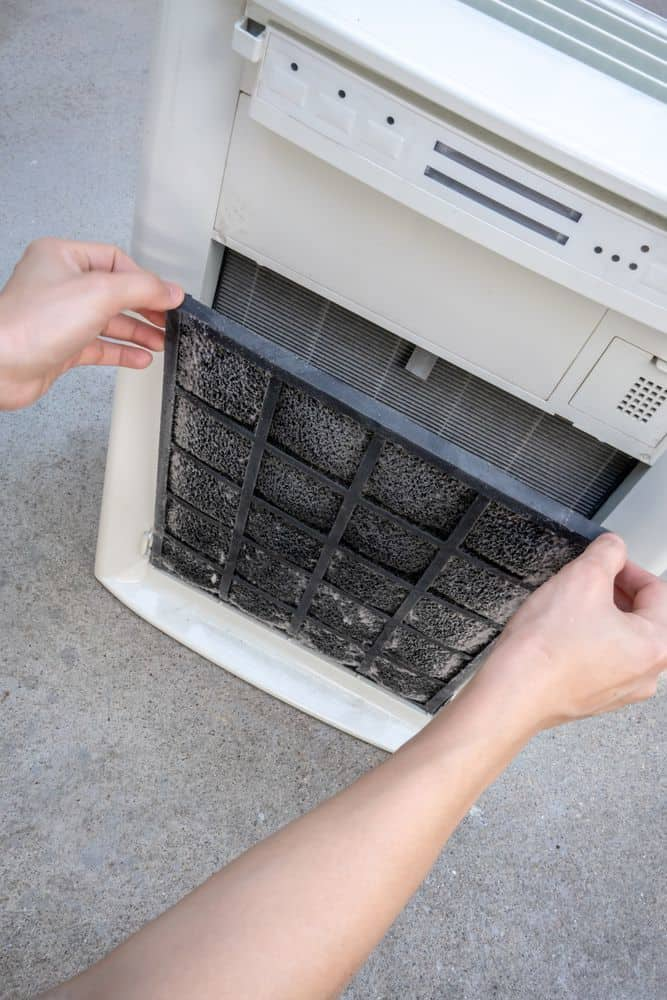cleaning and replacing air filter in air purifier