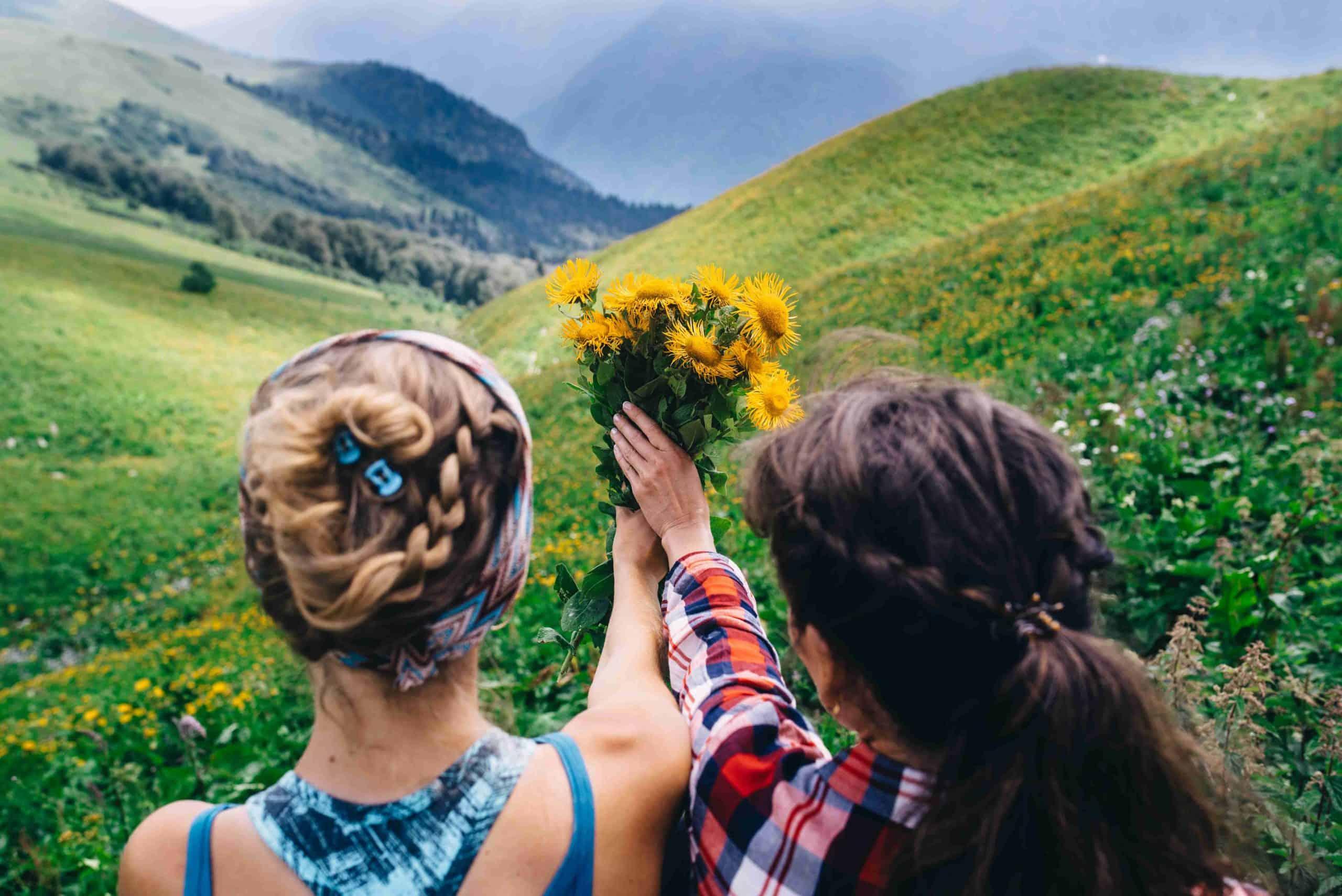 Natural Fresh Air